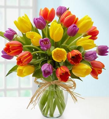 Fresh Tulips Memorylaneflowerson Com